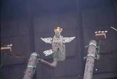 Der Königsvogel des Jahres 2000