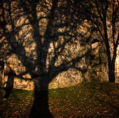Shadows on a wall (Krogen) Tags: norway norge norwegen olympus c7070 noruega nes scandinavia akershus romerike krogen noorwegen noreg skandinavia photomatix churchruin kirkeruin