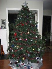 Since it's not an odd year, we brought out the fake tree. (12/24/06)
