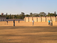 Jugando al cricket (II)