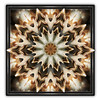 Design 2 ~(KFUN 39)~ (Gravityx9) Tags: brown abstract photoshop chop amer 1008 kfun 100408 colourartaward coloursplosion kaleidospheres picartbymike kfun39