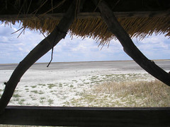 A hide for bird watching and game viewing.JPG
