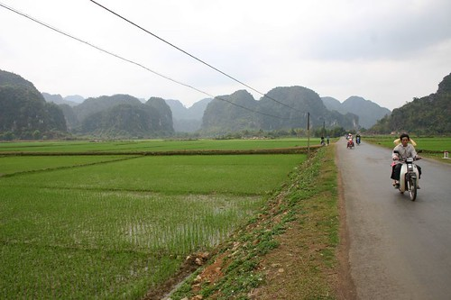 Rice fields and karst formations. Vietnam in a nut shell...