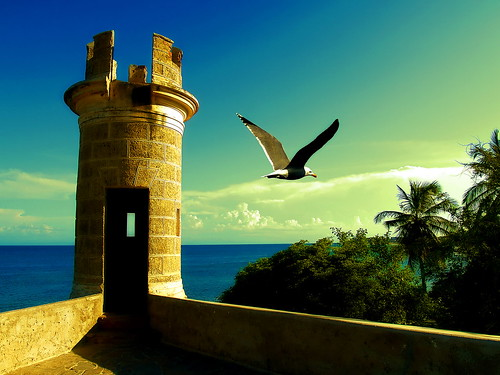 A postcard for the Margarita island