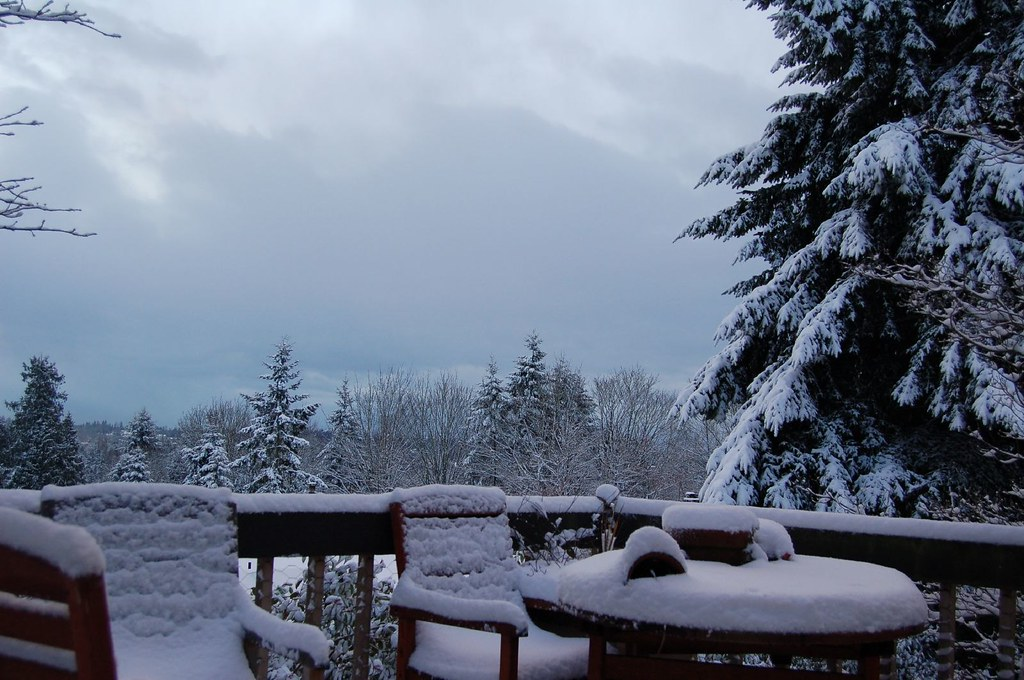 Snow Covered Deck
