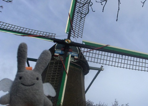 Angel Bunny and Het Pink, Zaandam
