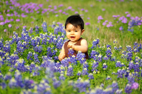 Rachel in the bluebonnets-5