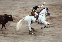 Cabriola (Tenebris) Tags: horse animal caballo cheval bilbao zb quiron jinete tenebris bizkaia corrida toro basquecountry 2007 zaldia rejoneador hipica jaoamoura