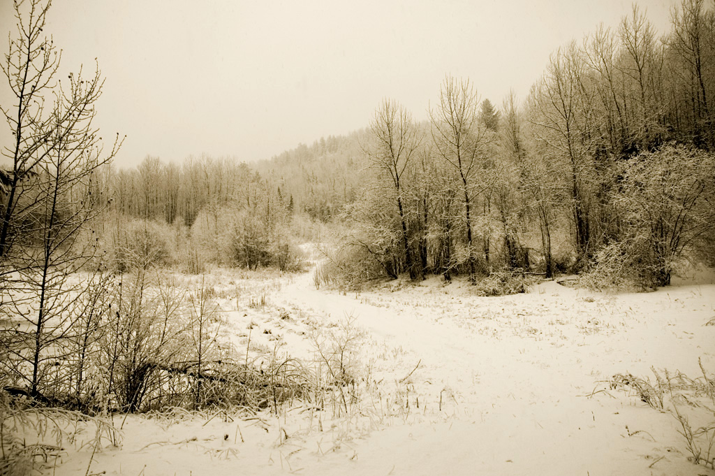 Winter's Last Blast