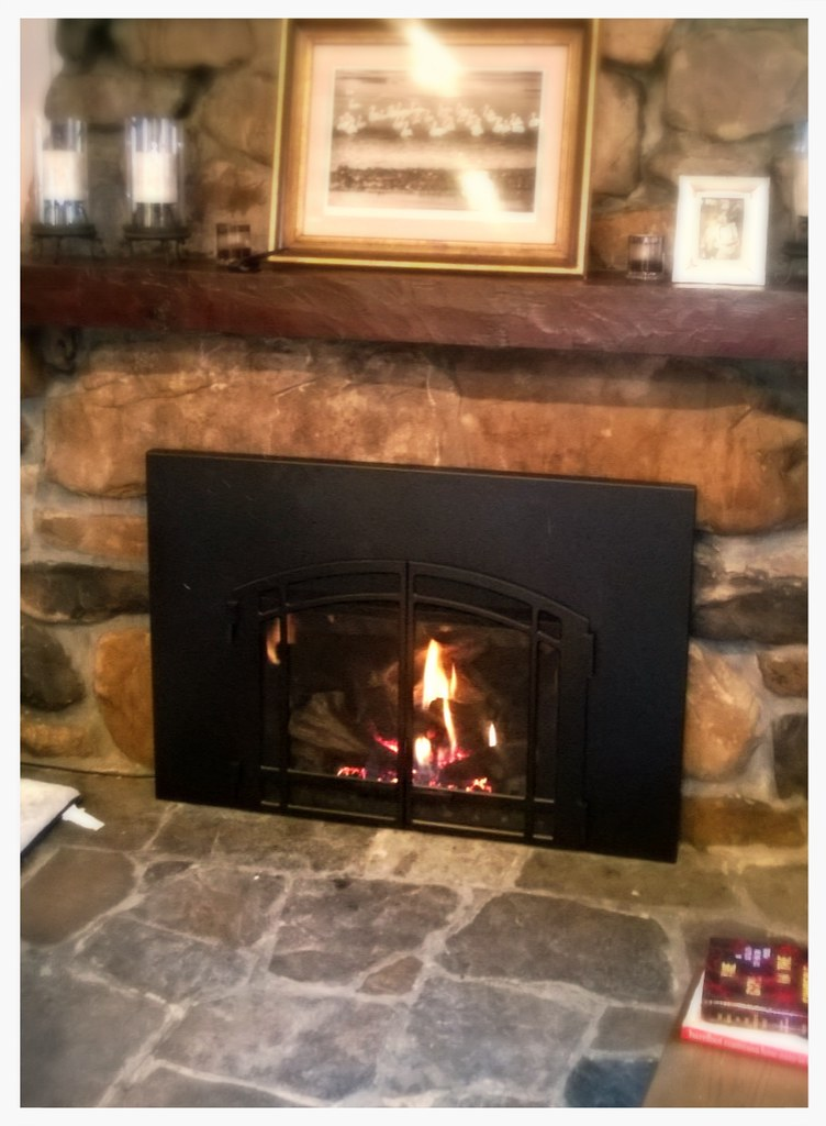 Mendota FV-44i Direct Vent Fireplace Insert. Chattanooga, Tn.