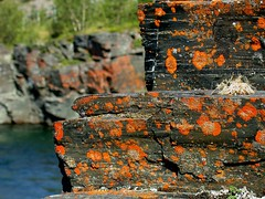 Abisko Canyon Red Lichen 1 (Circle of Light Photography) Tags: red summer nature water rock stone sweden lappland north swedish canyon arctic lapland lichen scandinavia northern scandinavian norrland abisko northernsweden abiskocanyon