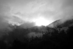 IMG_4267a (dckf_$êr@pH!nX) Tags: peru southamerica inca cuzco mystery lost ruins cusco perú perù enigma inka unescoworldheritagesite unesco worldheritagesite machupicchu sacredvalley incas inkas lostcity pérou américadosul vallesagrado 世界遗产 amériquedusud welterbe sacredvalleyoftheincas 世界遺産 zuidamerika ペルー sudamérica suramérica américadelsur valesagrado patrimoniodelahumanidad südamerika クスコ qosqo 南美洲 patrimoinemondial urubambavalley ph560 världsarv 南アメリカ 庫斯科 秘鲁 马丘比丘 פרו tahuantinsuyo listedupatrimoinemondial קוסקו பெரு தென்அமெரிக்கா amerikaselatan tawantinsuyu patrimôniomundial tapakwarisandunia historicsanctuaryofmachupicchu senaraiwarisandunia situswarisandunia