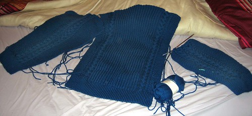 Reflection Aran Sweater progress
