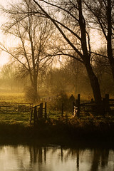 Alone in the morning (. Andrew Dunn .) Tags: park uk morning trees england people mist river walking landscape britain peterborough cambridgeshire eastanglia rivernene ferrymeadows thefens nenepark nenevalley interestingness18 i500 challengeyouwinner aplusphoto
