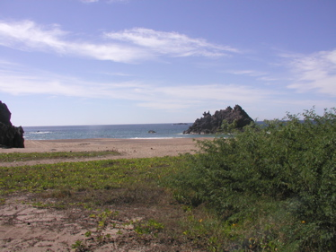 View from Tenacatita beach