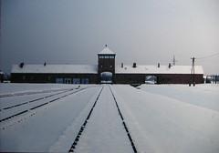 Birkenau's Entrance (Andrea Cassani) Tags: hitler entrance poland rail adolf auschwitz lager birkenau nazism lifetravel