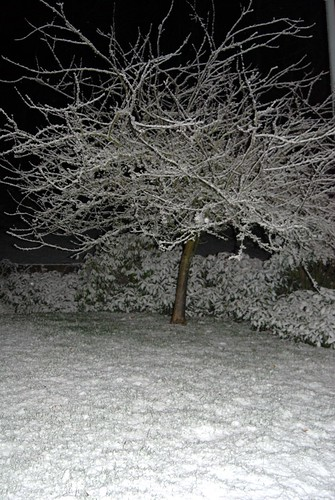 January 10, 2007