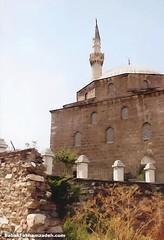 Mosquerade