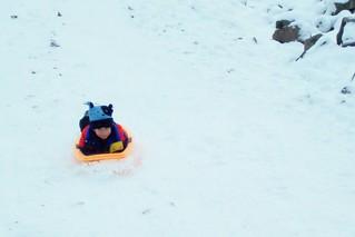 Snowy Macs Sledding