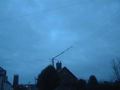 070115-birds001