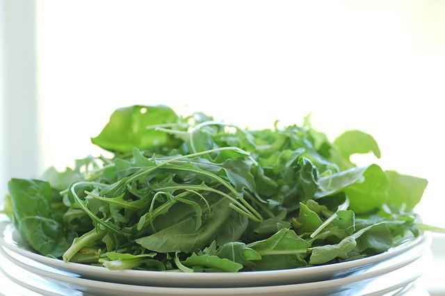 wild & tame rocket salad
