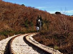 ferrovia, binari, autunno
