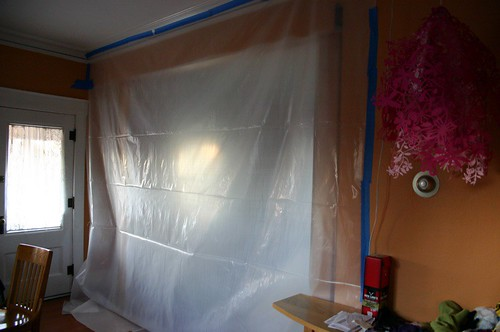 Admiring my plastic sheet in the living room?