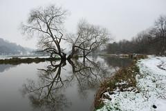 DSC_1582 - The river crack'd