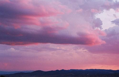 Belmont Sunset Pink