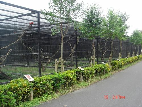 【花蓮旅遊(2006/12/15)】@兆豐休閒農場