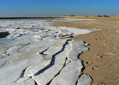 Bay Ice 4