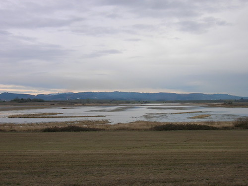 the baskett slough