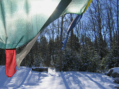 winter prayer flag.jpg