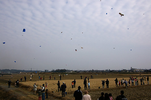 Kite festival 1
