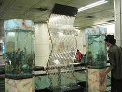 KIF_6833 (duncid) Tags: aquarium metro seoul coree