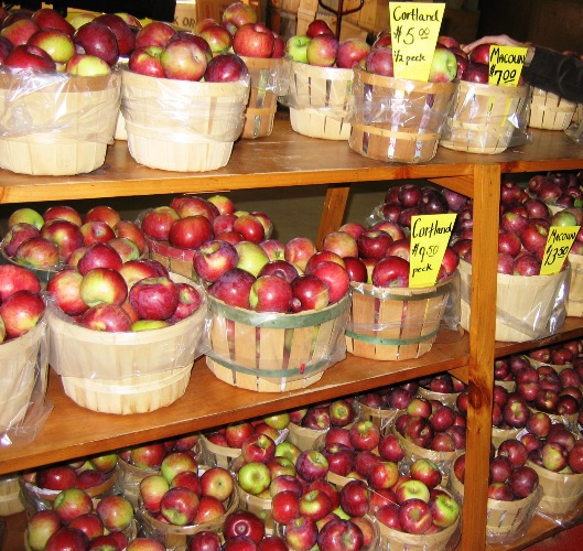 baskets of apples in Scituate, Rhode Island