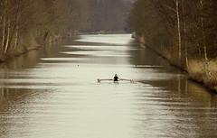 Sunday (Harry Mijland) Tags: holland nederland rowing alpha hilversum roeien a100 kortenhoef dearharry hilversumskanaal harrymijland
