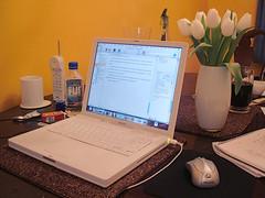 working sunday (petit hiboux) Tags: writing diningroom organizedclutter workingsunday