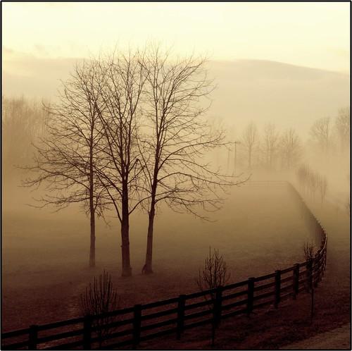 Dusk or Dawn