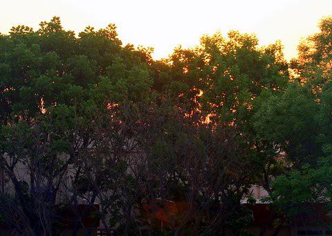 sunrise over B G Road