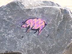 Asbury Park Pig (aka Buddy) Tags: usa beach rock pig newjersey asburypark nj og 2007 123nj monmonthcounty capturejerseyshore