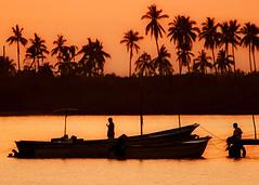 Da 227 . Siluetas (WakamouL) Tags: sunset orange mexico atardecer boat fishing palmeras palm nayarit pesca naranja sanblas gp lancha ltytr1 gpcompaisajes