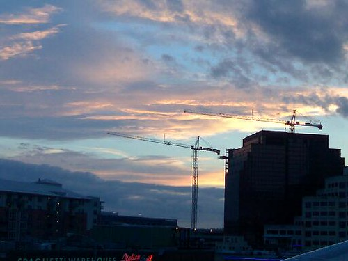 Austin Cranes in the Sunset