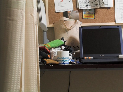 my desktop (Nikon coolpix 3100 raw testshot)
