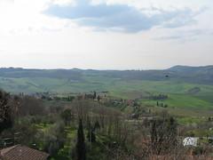 Montepulciano 4