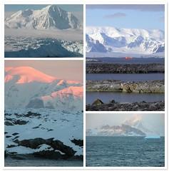 I love Antarctica!