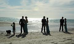 Always the bridesmaids (badjonni) Tags: blue sea people sun colour beach groom bride sand colorful bridesmaids 100 henley beachwedding seas