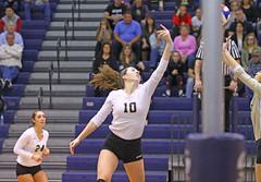 IMG_7980 (SJH Foto) Tags: girls volleyball high school york delone catholic team teen teenager net battle spike block action shot jump midair burst mode tip