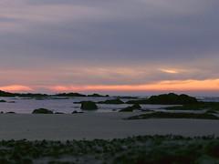 Calme (chloe_lgn) Tags: landscape seascape mer sea beach plage sunset sun pinksky bluesky coucherdesoleil calme quiet vendee france lessablesdolonne canon rocks rock extrieur paysage cte ciel cloud nuage