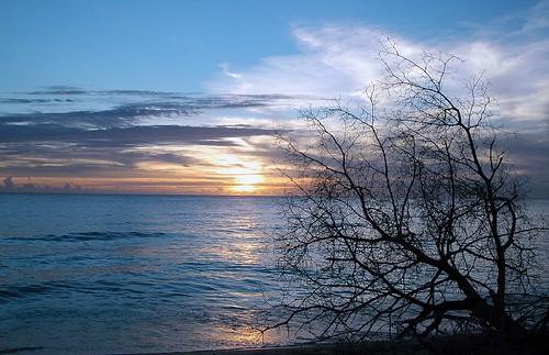 Speightstown Sunset
